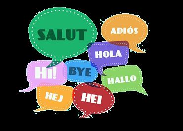 مشاهده محصولات آموزش زبان